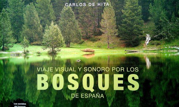 Presentación en la Casa Lis del Viaje visual y sonoro por los bosques de España de Carlos de Hita