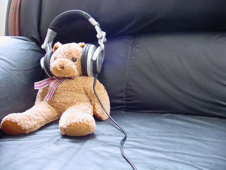 Teddy Bear, foto de Jorge Alejandro Preciado Oseguera